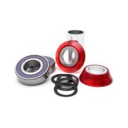 ANML 22mm BB MIDI TRANS RED
